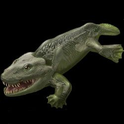 Секрети пересування перших наземних тварин