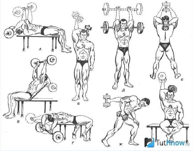 Схема вправ для розвитку трицепса