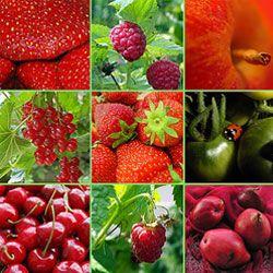 Скільки насправді потрібно з`їдати овочів і фруктів в день?
