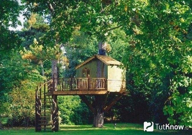 Будиночок для ігор на дереві