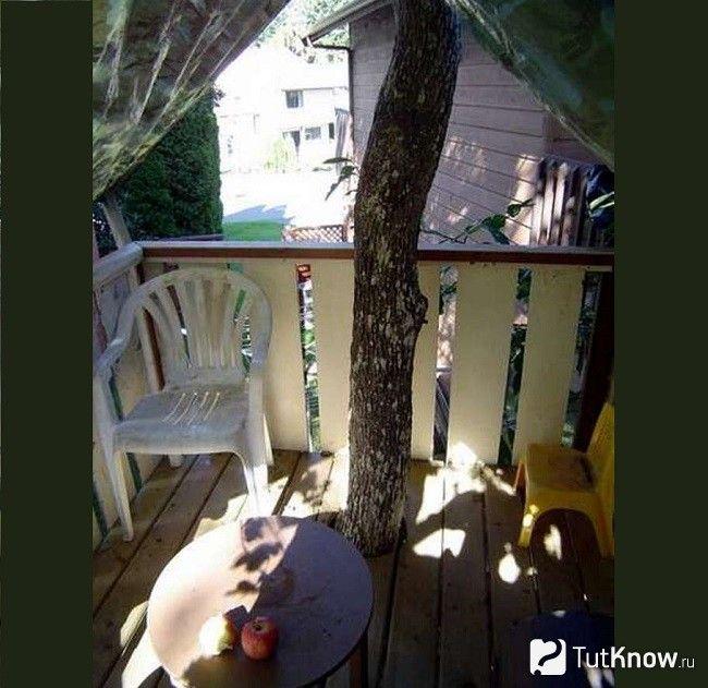 Будиночок на дереві всередині