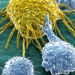 Вчені знайшли новий спосіб лікування раку одним уколом