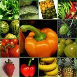 Вуглеводи: види, користь і вміст у продуктах харчування
