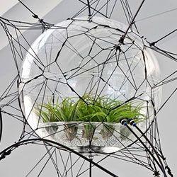 Висячі сади дюссельдорфа: в германии представили унікальну інсталяцію