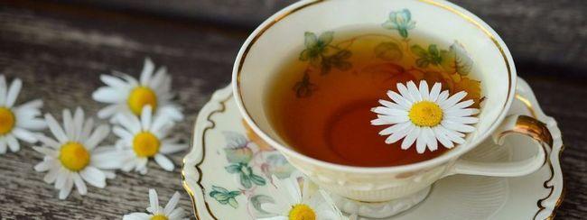 Вся користь і шкода релакс-напоїв: 10 рецептів приготування в домашніх умовах