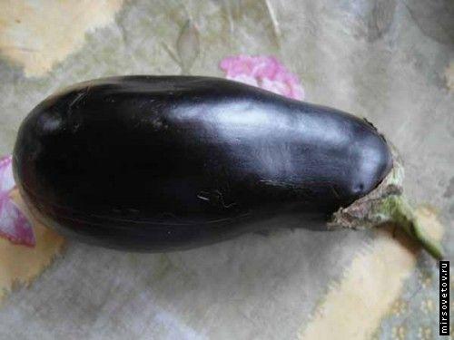 Вирощування баклажанів