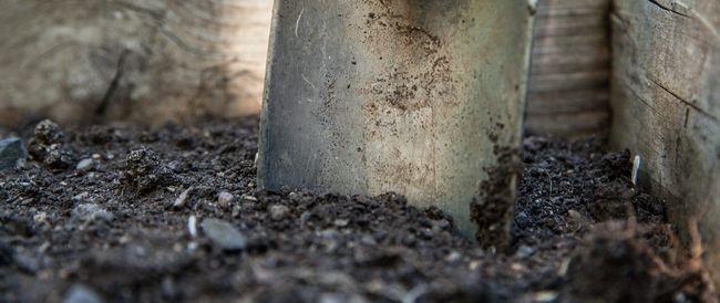 підготовка ґрунту