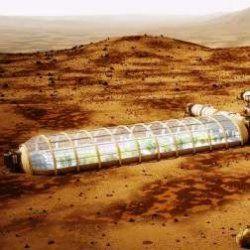 Вирощування картоплі можливо на інших планетах, вважає вчений