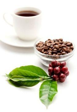 Зерновий або розчинна кава - що вибрати