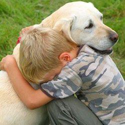 Чи знають собаки, коли ми сумуємо?